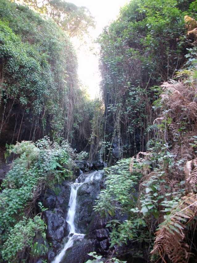 die schoene Wasserfalltour nach El Cedro