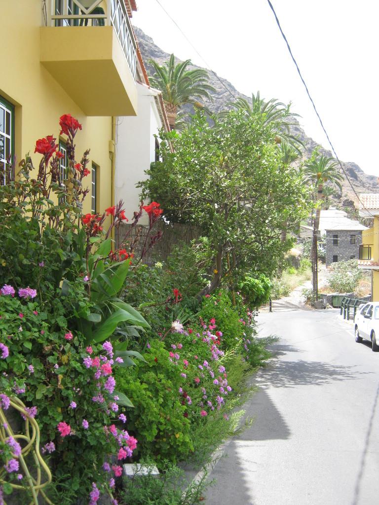 Auf dem Weg durchs Obertal von Valle Gran Rey
