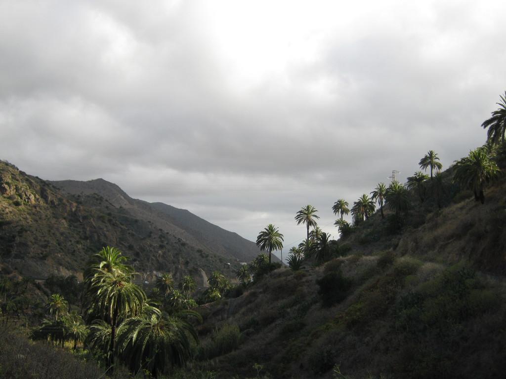 Vallehermoso - auf der Wanderung 3