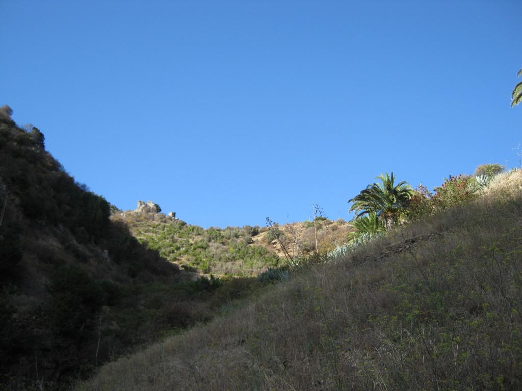 Vallehermoso - auf der Wanderung 4